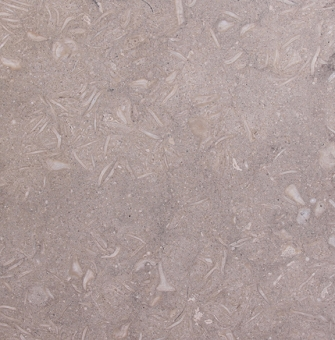 Sea Grass Honed Limestone Tile 16