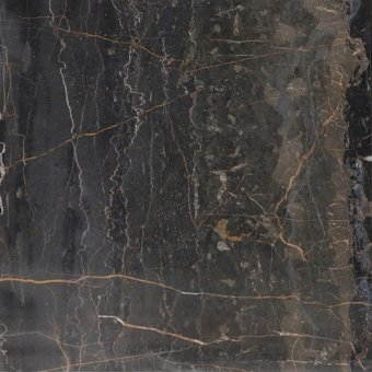 Golden Brown Marble Tile 12